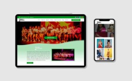 Web design for Face of Nigeria